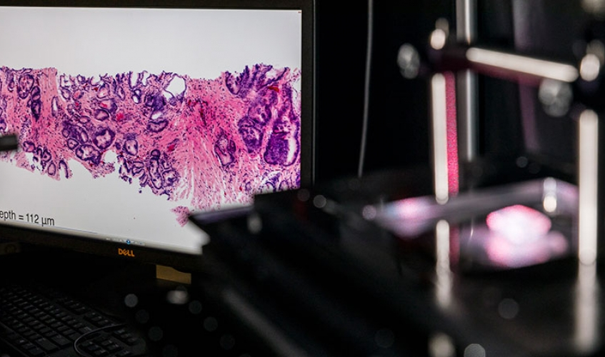 microscope tissue scan